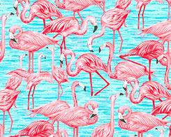 Flock of Flamingos - Coral