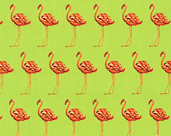 Strutting Flamingos- Lime Fabric